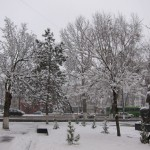 Tashkent in White
